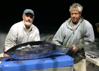 tuna fishing hyannis
