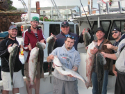 Striped Bass Fishing Hyannis Groups
